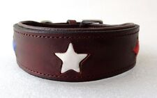 Pstore Quality Leather dog Collar  with star design