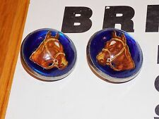 Vintage Horse Head Bridle Rosettes Pair - Dome Glass Face - New on Retail Card