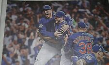 Cubs Win the WORLD Series! Chicago Tribune Newspaper (Own a Piece of history!)