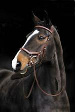 Rambo New Micklem Competition Bridle