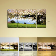 Large Canvas Print Landscape Cherry Blossom Tree Gallery Wrapped Wall Art Framed