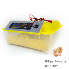 Automatic Egg Incubator Digital Brooder Hatchery Machine For Hatching 48 Eggs