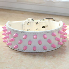 Pink Spiked Studded Leather Dog Collar for Large Breed Pit Bull Terrier
