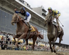 Curlin 2007 Preakness Stakes Remote Photo