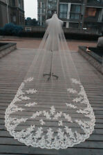 Sexy-3m-Cathedral-Wedding-Veils-Lace-Appliques-Long-Bridal-Veil-With-Comb