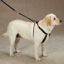 Guardian Gear Anti Pull Dog Harness No Pull (designed by J. Sporn) Training
