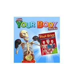 HOW YOUR BODY WORKS BUILD YOUR OWN BILLY BONES *ISSUES 21 UPWARDS* - NEW/SEALED