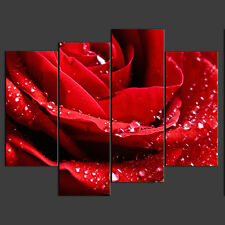 QUALITY CANVAS PICTURE RED ROSE  READY TO HANG CANVAS PRINT ART
