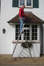 Platform Step Ladders / Ladder: 2 Step to 8 Step - FREE Next Day Delivery!