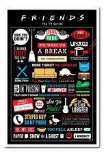 Framed Friends TV Show Infographic Poster Ready To Hang New