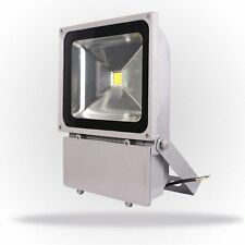10W 100W 150W 200W Watts Outdoor LED Tunnel  Flood light White RGB Spotlights