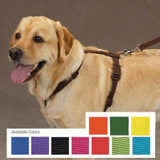 Nylon Dog Harness Pet Adjustable Easy to Use Zack & Zoey 11 colors 4 sizes NEW
