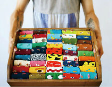 CHOICE Best selling Cute ANIMAL & Lovely Pattern Unisex COTTON Colorful SOCKS