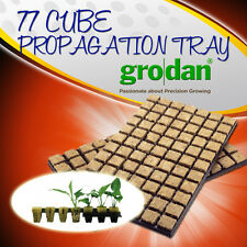 GRODAN 77 Grow CUBE PROPAGATION TRAY for Hydroponic Plant Growing