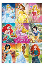 Disney Princess Collage Poster New - Maxi Size 36 x 24 Inch
