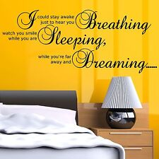 Aerosmith Dream Song Bedroom Wall Quote Wall Art Sticker Decal Transfer Stencil