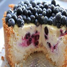 Blueberry Cheesecake Fragrance Oil Candle/Soap Making Supplies **Free Shipping**
