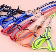 Reflective Rope Dog Pet Puppy Safety Noctilucent Harness Leash Lead Your PICK