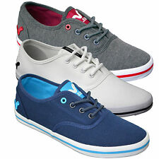 Mens Designer Voi Jeans Canvas Shoes Pumps Trainers Plimsoles Footwear Low New