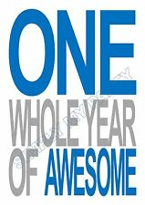 IRON ON TRANSFER / STICKER -  ONE WHOLE YEAR OF AWESOME 1ST BIRTHDAY BOY T-SHIRT