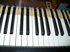 White and Black weighted keys for Roland fantom G8