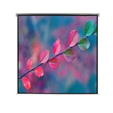 #bNew Manual Projection Screen Mat White Wall Ceiling Mounted SixSize Selectable