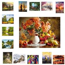 Unframed Canvas DIY Digital Oil Painting Kit Paint by Numbers Home Wall Decor