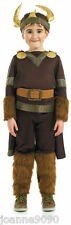 BOYS KIDS VIKING NORSE WARRIOR MEDIEVAL FANCY DRESS COSTUME SCHOOL HISTORY LARGE