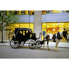 'Horse-Drawn Carriage Outside Store in Chicago, Illinois' Photography Canvas Pri