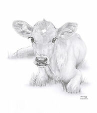 CALF Cow Limited Edition art drawing prints avail 2 sizes A4/A3 & greetings Card