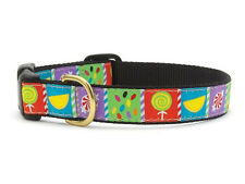 ANY SIZE - UP COUNTRY - MADE IN USA - DESIGNER DOG COLLAR - SWEETIE