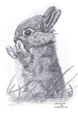 RABBIT Bunny ltd edition art drawing prints 2 sizes A4/A3 available & card