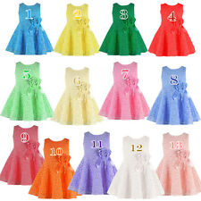 Wholesale 13 Colors Kids Baby Girls Toddler Princess Pageant Party Flower Dress