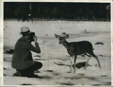 1931 Press Photo A man taking a picture of a deer at the Sequoia National Park