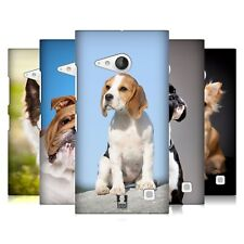 HEAD CASE DESIGNS POPULAR DOG BREEDS HARD BACK CASE FOR NOKIA LUMIA 730 / 735