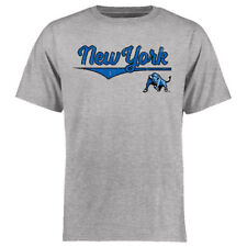 Buffalo Bulls Fanatics Branded American Classic  T-Shirt - Heather Gray