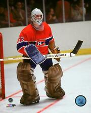 Patrick Roy Montreal Canadiens NHL Action Photo TW153 (Select Size)