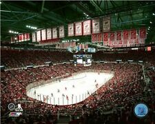 Joe Louis Arena Detroit Red Wings Final NHL Game Photo UA022 (Select Size)