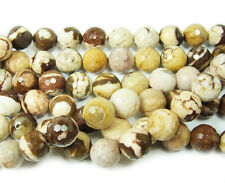 Australian Zebra Faceted Gemstone Beads~Guaranteed