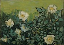 Photo Print Reproduction Wild Roses Vincent Van Gogh Other Sizes Avail