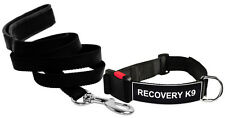 DT Dog Collar & Leash Bundle with Velcro Patch - RECOVERY K9