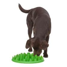 COMPANY OF ANIMALS GREEN INTERACTIVE FEEDER dogs puppy feed toy bowl dish 39119