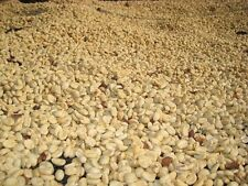 Up To 100 lbs Colombian Medellin Supremo Green Coffee Beans, Fresh Crop