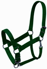Adjustable Webbed  Halters - Horse, Pony ,Cob Sizes available