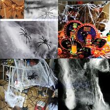 Hot Stretchable Spider Web Decoration For Halloween Party Club Props 5 Colors