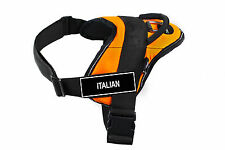 DT FUN Orange Working Dog Harness with Fun Velcro Patches ITALIAN