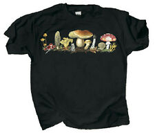 Mushrooms T-Shirt NEW Adult Fungi Morel Chanterelle Elf Cup Staghorn Med XL