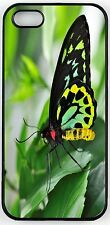 Richmond Birdwing Neon Green Butterfly Case for iPhone 4/4s, 5/5s, 5c
