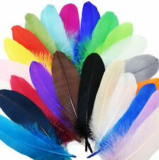 """Large Goose Quill Feathers x 4. Bright Shades, Crafts, Costumes etc, 6"""" to 7"""""""