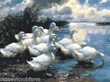 Going for a Swim ~ Ducks ~ Counted Cross Stitch Chart